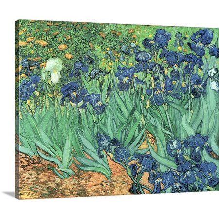 Great BIG Canvas | Vincent Van Gogh Premium Thick-Wrap Canvas entitled Irises, 1889 (Van Gogh Halloween)