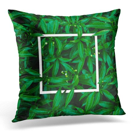 ARHOME Colorful Leaf Creative Made of Tropical Flowers and Leaves with Note Flat Lay Blank Nature Concept Green Throw Pillow Case Pillow Cover Sofa Home Decor 16x16 Inches