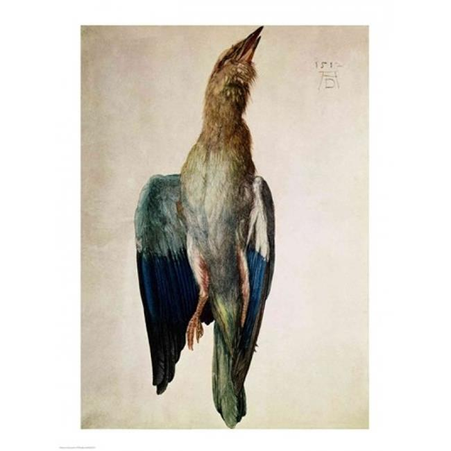 Posterazzi BALXIR201572LARGE Blue Crow 1512 Poster Print by Albrecht Durer - 24 x 36 in. - Large - image 1 of 1