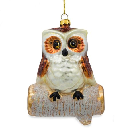 Wise Owl Sitting on a Branch  Glass Christmas Ornament