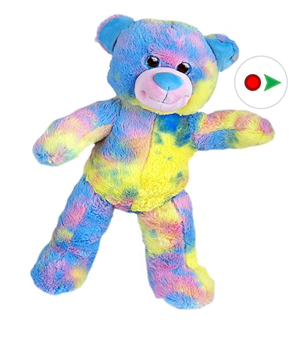 Record Your Own Plush 16 inch Candy Bear Teddy Bear Ready To Love In A Few Easy Steps by Teddy Mountain