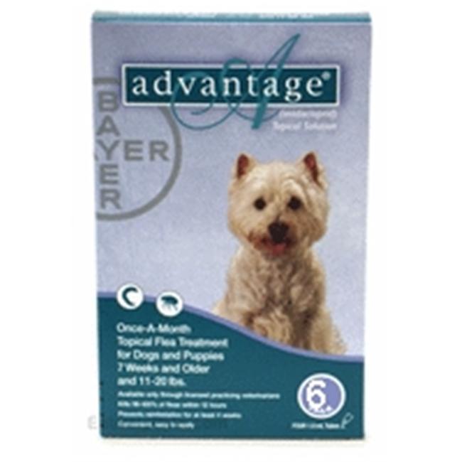 Bayer ADVANTAGE6-TEAL Advantage 6 Pack Dog 11-22 Lbs.  - Teal