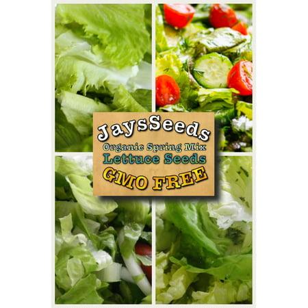 Organic Spring Lettuce Mix Lettuce 500 Seeds (Non-Gmo) (Lettuce Live Halloween)