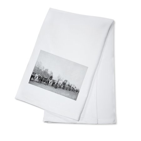 Woman with Ox Train Holds a Whip Photograph (100% Cotton Kitchen Towel)