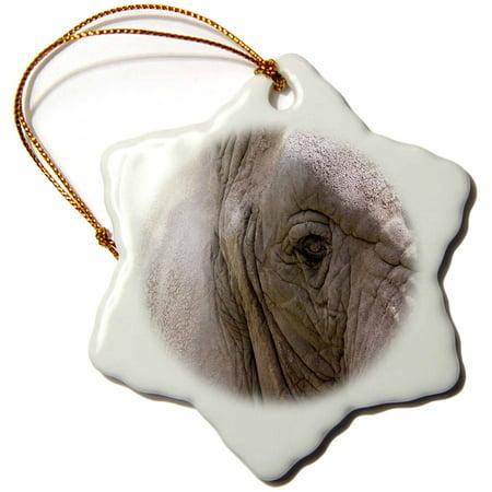 3dRose Kind Giant, Elephant - Snowflake Ornament, 3-inch (Giant Snowflakes)