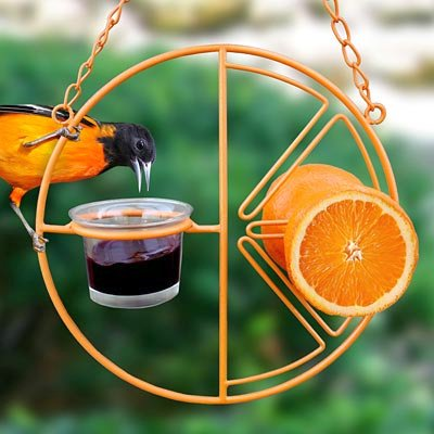 Heath Outdoor Products Oriole Wild Bird Feeder for Oranges and Jelly