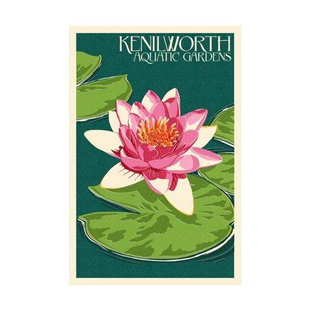 Lily Pad and Lotus - Kenilworth Aquatic Gardens Print Wall Art By Lantern