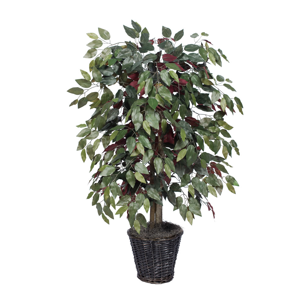 Vickerman 4' Artificial Capensia Bush in a Rattan Basket