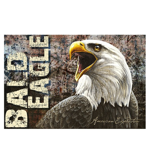 American Expedition Bald Eagle Graphic Art on Canvas