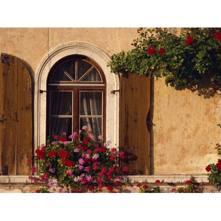 Shutters Window Boxes - Window with Shutters and Window Box, Italy, Europe Print Wall Art By Hart Kim