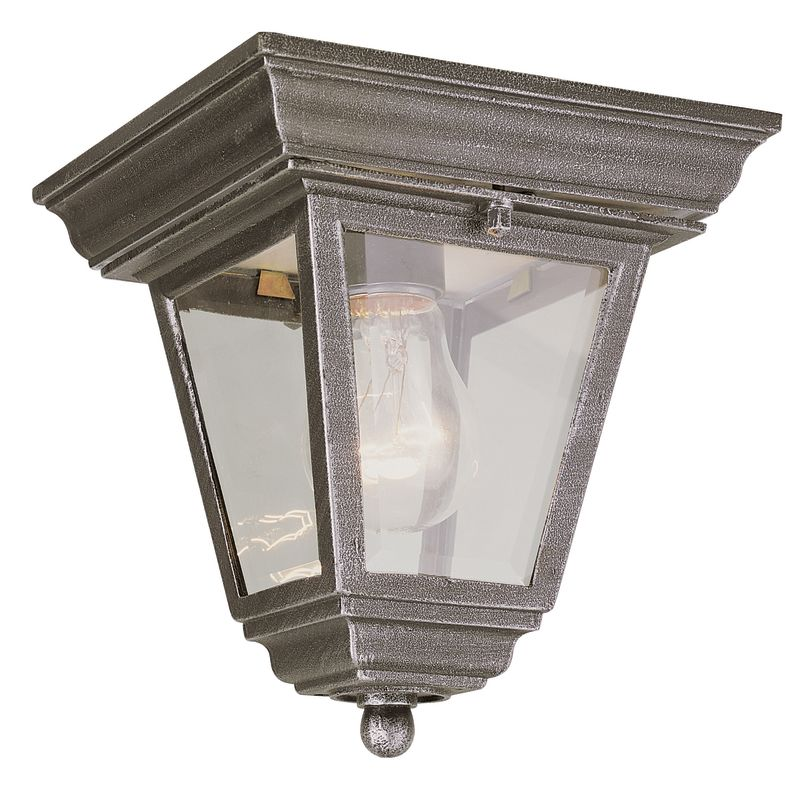 Trans Globe Lighting 4903 Singe Light Down Lighting Outdoor Flush Mount Cast Alu