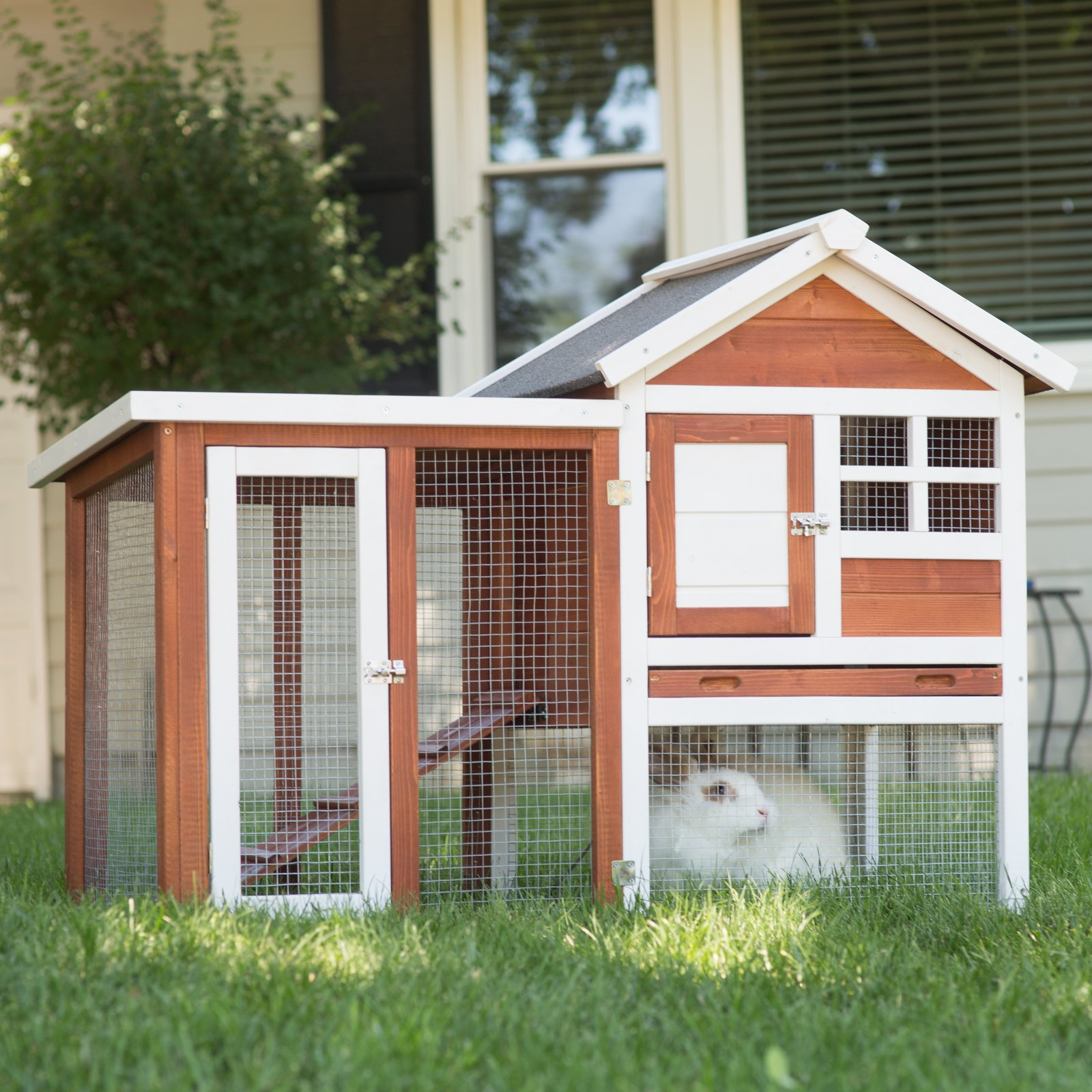 Boomer & George Elevated Rabbit Hutch by