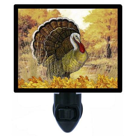 Night Light - Photo Light - Fall Turkey - Thanksgiving - Wildlife - Hunting ()