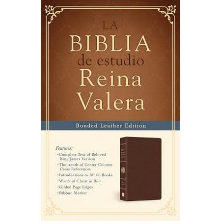 La Biblia de estudio Reina Valera : Reina Valera Study Bible