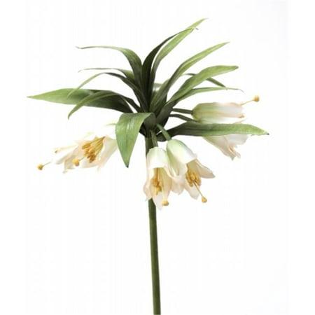 Distinctive Designs DW-1174-GRIV DIY Flower Green Ivory Crown Imperial - Pack of - Flower Crown Diy