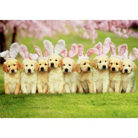 Avanti Press Row Of Puppy Bunnies Dog Easter Card