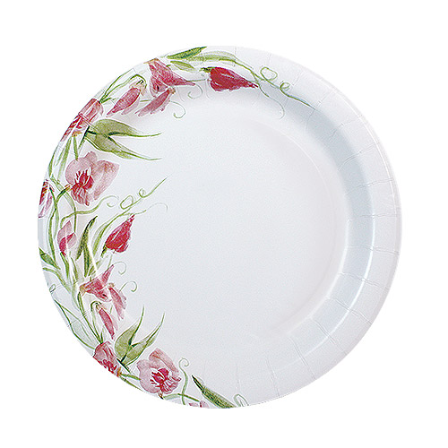 "Nicole Home Collection Everyday Floral Paper Plates, 8.75"", Pink Floral, 48 Ct"