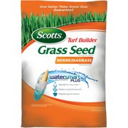 Best Bermuda Grass Seeds - BERMUDA GRASS SEED 15LB Review