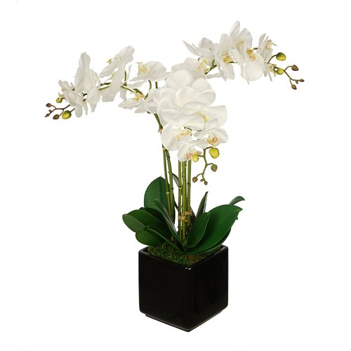 House of Silk Flowers Inc. Artificial Triple Stem Orchid in Cube Vase