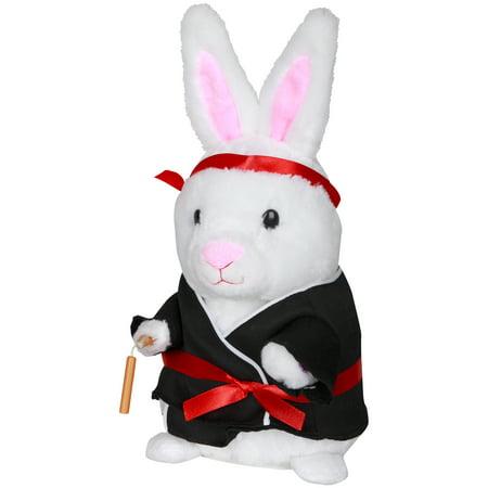 Easter Dancing Kung Fu Bunny