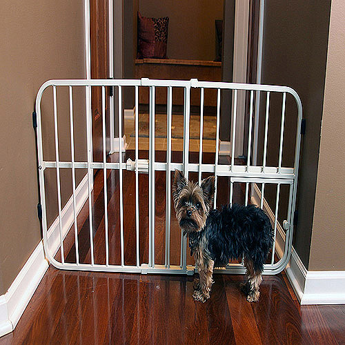 Carlson Pet Products Mini Tuffy Pet Gate, Metal