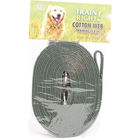Coastal Leather Dog Leash (Coastal Pet Products Train Right! Cotton Web Training Dog Leash, 20', Black)