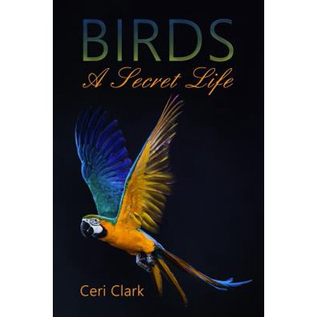 Birds a Secret Life : A Disguised Password Book and Personal Internet Address Log for Bird