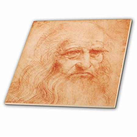 3dRose Self Portrait red chalk by Leonardo da Vinci 1519 Glass Tile 8