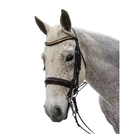 Exselle AEBD6155F Elite Plain Raised Padded Rolled Leather Double Bridle-X Brow, Dark Brown - Full