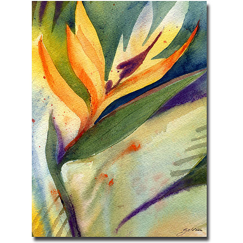 "Trademark Art ""Bird of Paradise"" Canvas Wall Art by Shelia Golden"