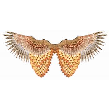 Feathered Womens Adult Bird Animal Costume Accessory Owl Wing
