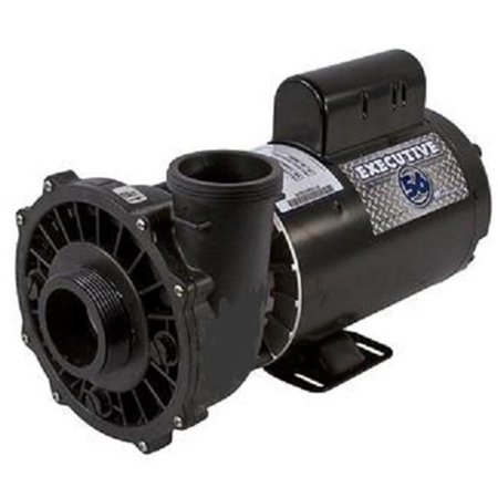 Waterway Plastics 3721621-1 230V 12.4 amp Four Horsepower Dual Speed Thru-Bolt Motor Replacement for Pool & Spa Pump