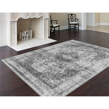 Bliss Rugs Imani Transitional Area Rug