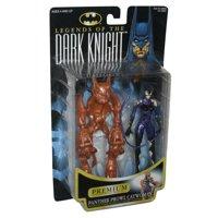 DC Batman Catwoman Legends of The Dark Knight Premium Kenner Figure