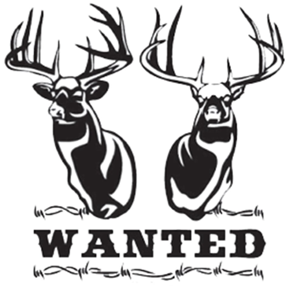 Western Recreation Wanted Whitetail Decal