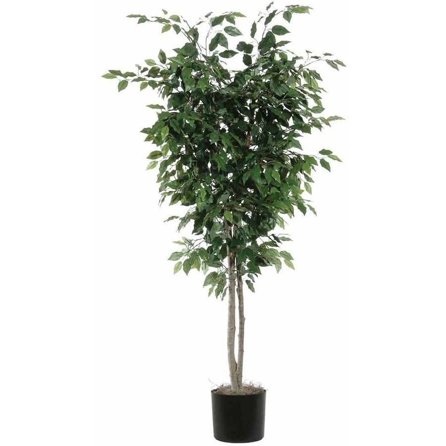 Vickerman 7' Artificial Ficus Deluxe