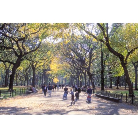 The Mall, Central Park, Manhattan, New York, USA Print Wall Art By Peter (The Mall New York)
