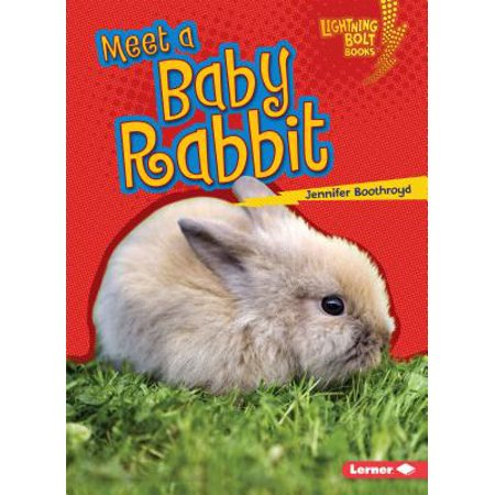 Meet a Baby Rabbit - Meet The Baby Party