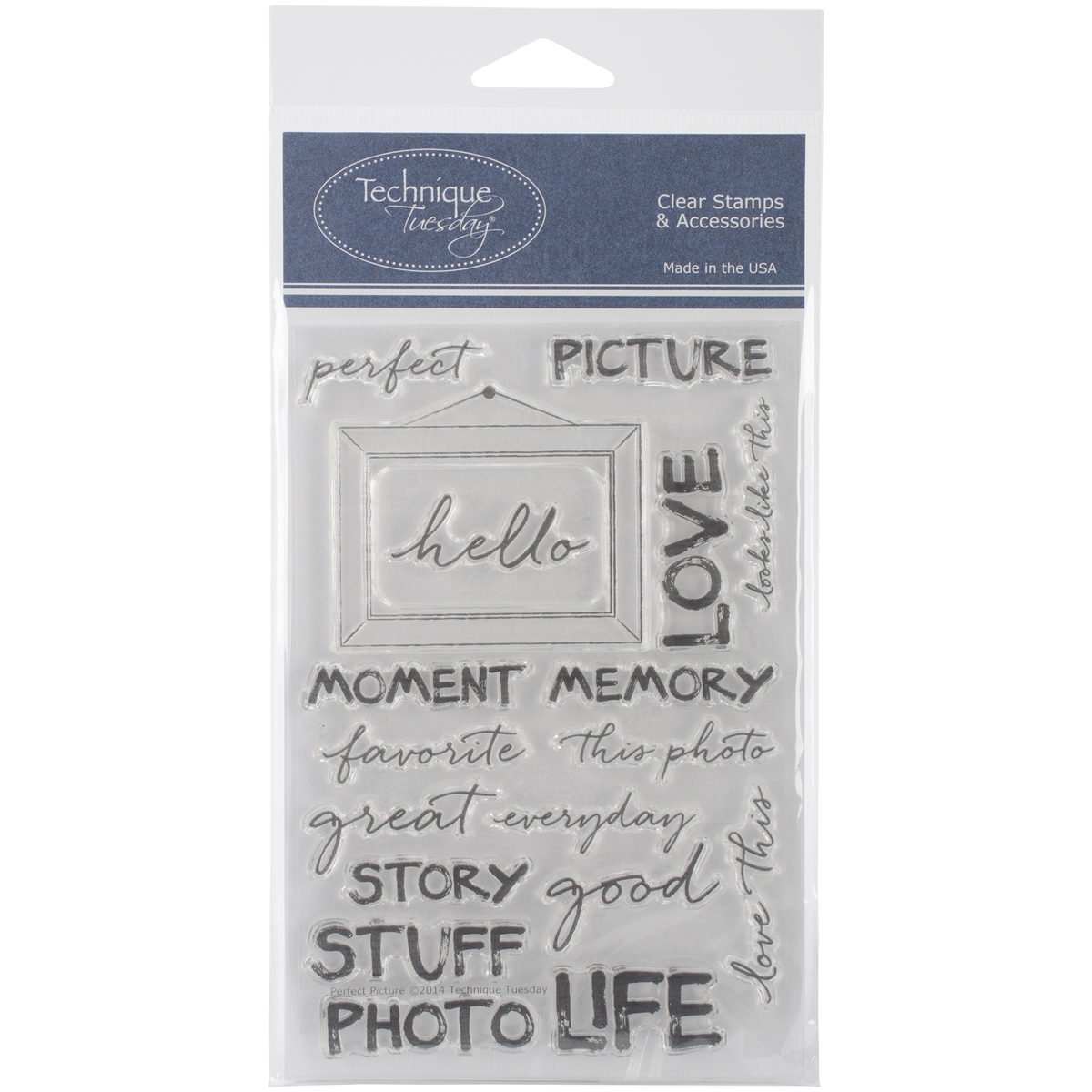 """Technique Tuesday Clear Stamps 4""""X6""""-Perfect Picture"""