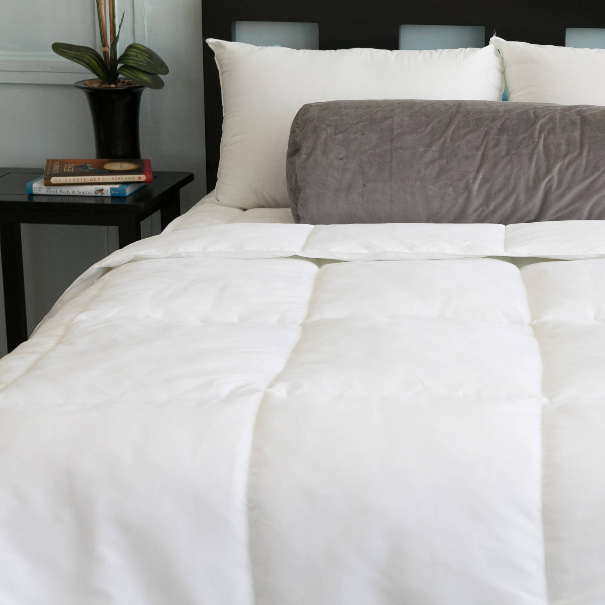 Cozy Classics Cotton Down Alternative Comforter