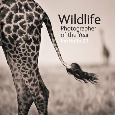 Wildlife Photographer of the Year Portfolio 21. (Natural History Museum Photographer Of The Year 2016)