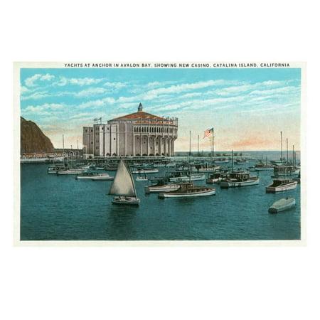 Santa Catalina Island, California - Yachts at Anchor in Avalon Bay Print Wall Art By Lantern Press