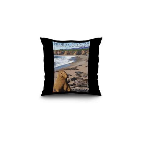 Piedras Blancas Elephant Seal Rookery - California - Lantern Press Poster (16x16 Spun Polyester Pillow, Black Border)