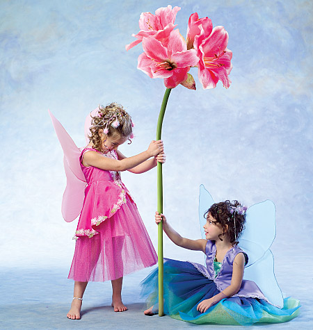 McCall's Children's and Girls' Fairy Costumes, CDD (2, 3, 4, 5)