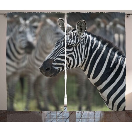 African Curtains 2 Panels Set, Zebra in Serengati National Park Safari Animal in Desert Picture, Window Drapes for Living Room Bedroom, 108W X 84L Inches, Black White Reseda Green, by Ambesonne (Safari Park Set)