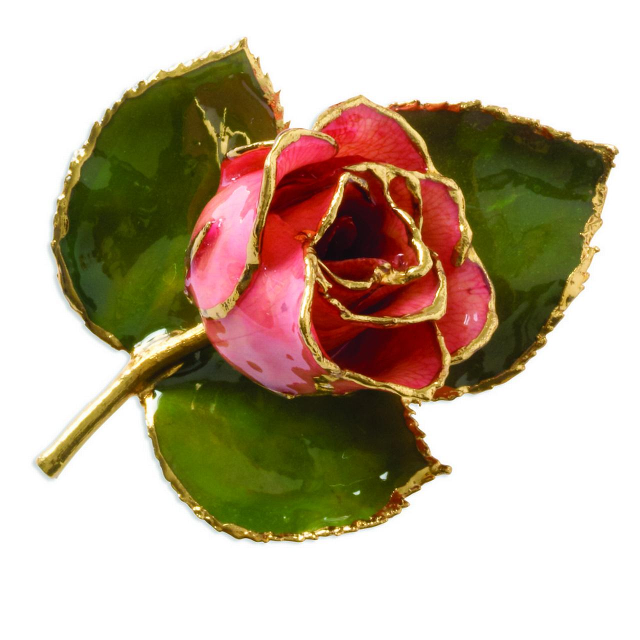 24k Gold Trim Pink Rose Brooch Pin by