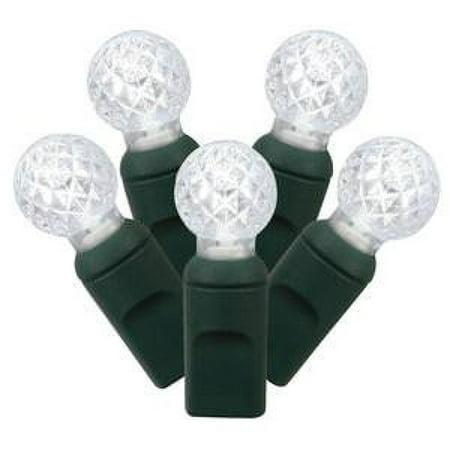 Vickerman 50 Pure White G12 LED Light on Green Wire 25' Christmas Light Strand -X6G9509PBG - image 1 of 1