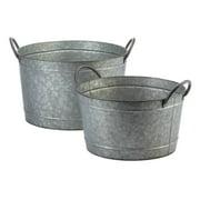 Novelty Galvanized Bucket Planter Duo