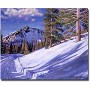 "Trademark Art ""Snow Mountain Road"" Canvas Wall Art by David Lloyd Glover"