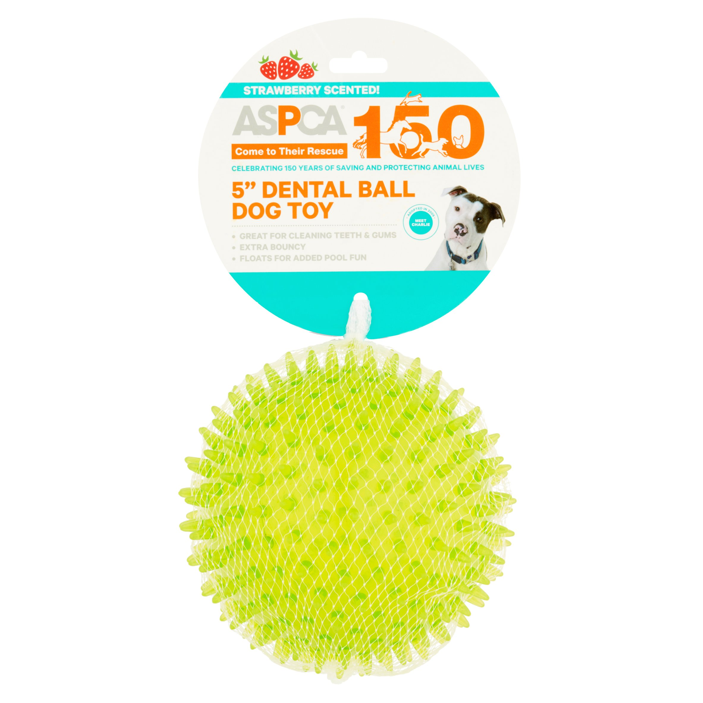 "ASPCA 5"" Dental Ball Dog Toy"